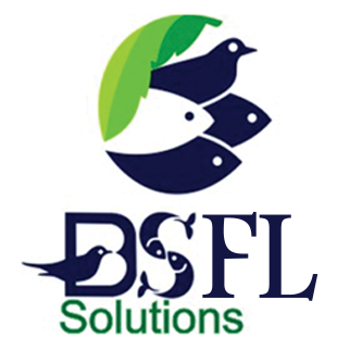 BSFL Solutions